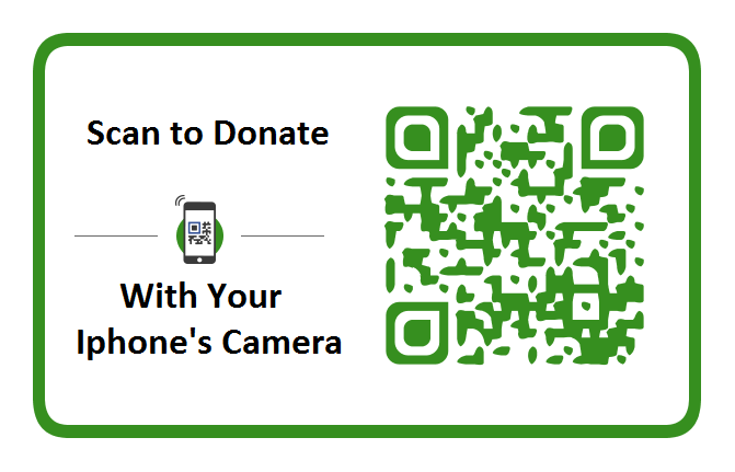 PayPal Donation Green Button